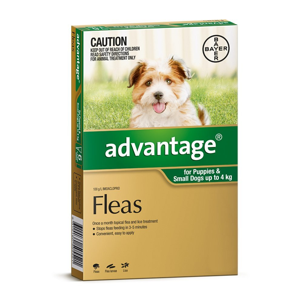 Advantage For Small Dogs (up to 4kg) 6 Pack