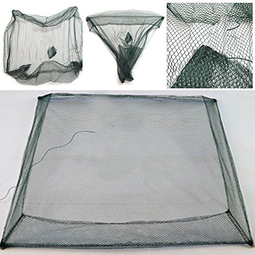 Denpetec Fishing Net, Folding Fish Shrimp Minnow Crab Baits Cast Mesh Trap Fishing Pot (Plastic Minnow Trap)