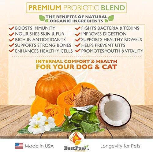 Dog Cat Premium Probiotic Prebiotic wel Supplies