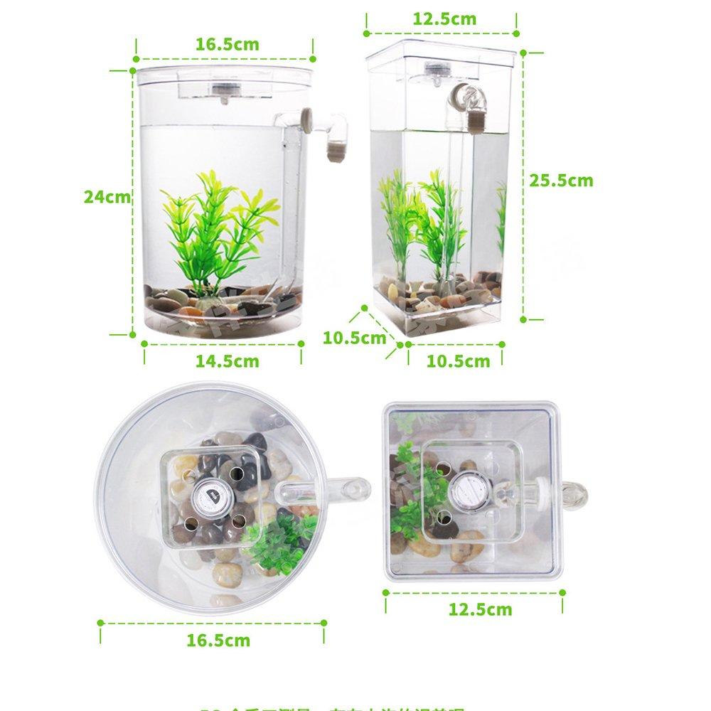 Ecologia Creativa Delle Vasche Vasche Vasche Per Pesci In Plastica Per Desktop - I Piccoli Cambi D'acqua Dell'acquario Magico,Squarebody 1ae4d0