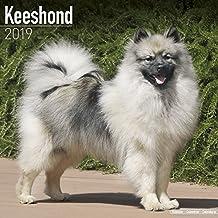 Keeshond Calendar 2019
