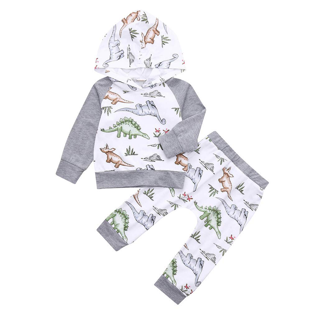 Zerototens Newborn Outfit Set, 0-24 Months Toddler Baby Clothes Boys Girls Autumn Winter Long Sleeve White Cartoon Dinosaur Print Hoodie Tops and Pants 2Pcs Children Clothing Set