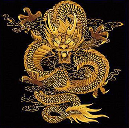 Greek Art Paintwork Paint Color By Numbers Kit,Chinese Dragon,24-Inch-by-24-Inch