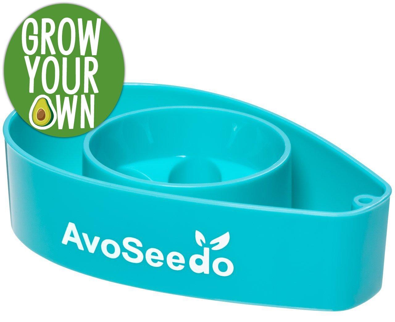 AvoSeedo das besondere Garten Geschenke - Pflanzen Sie Ihren eigenen Avocadobaum. Kleine Geschenke für Männer und Frauen. Die neue klein Dekoration - Blau 763461405370