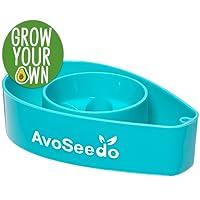 AvoSeedo Bowl Grow Your own Avocado Tree