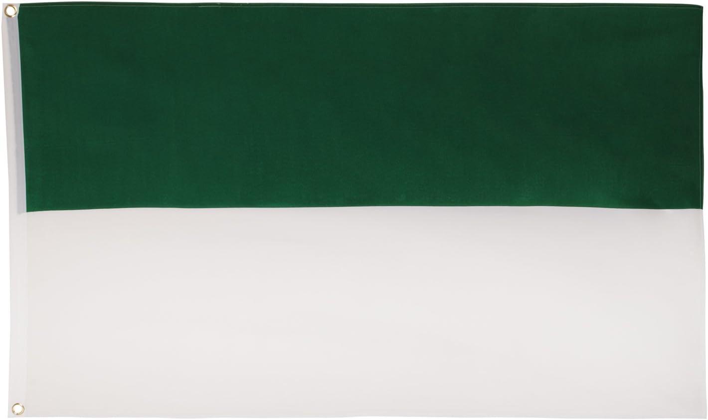 Flagge Fahne Grün Hissflagge 60 x 90 cm