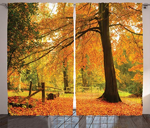 Ambesonne Farm House Decor Collection, Autumn Fall Forest Scene with Vibrant Colors and Pale Leaves Tranquil Peace Nature, Living Room Bedroom Curtain 2 Panels Set, 108 X 84 Inches, Orange ()