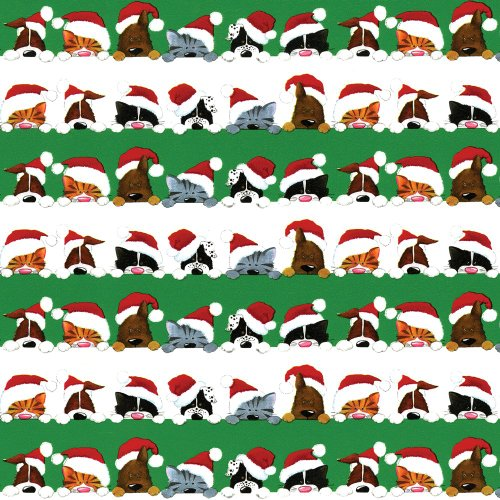 Caspari 9599RC Caspari Continuous Roll of Gift Wrapping Paper, Christmas Peek A Boo, 8-Feet, 1-Roll (Gifts Christmas 1)