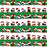 Caspari Entertaining with Continuous Roll of Gift Wrapping Paper, Christmas Peek A Boo, 8-Feet, 1-Roll