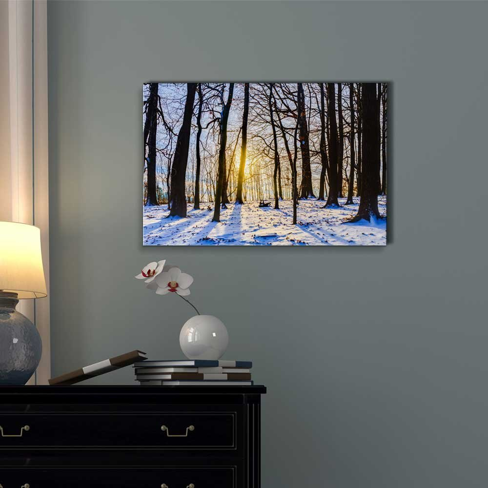 wall26 Winter Forest Sunset Lovely Blue Snow Color and Long Shadows from The Barren Trees – Canvas Art Wall Decor – 32 x 48