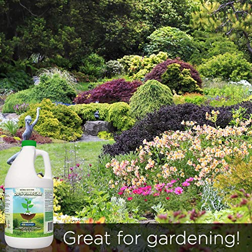 20% Vinegar | Industrial Strength Natural Vinegar | Multi Purpose - 5 Gallon Pail by Green Gobbler (Image #6)