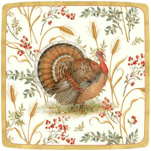 Thanksgiving Paper Plates Thanksgiving Dinner Plates Thanksgiving Table Decor Turkey Plates Pk 16 -