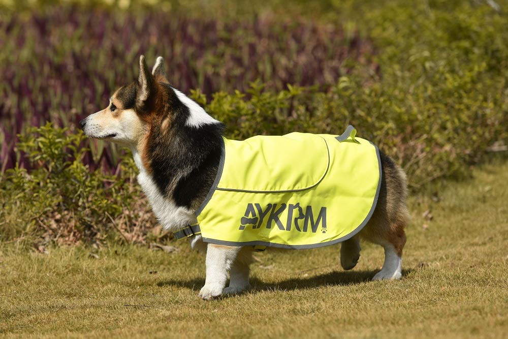 AYKRM Hundemantel, wasserfest, hohe Sichtbarkeit, Hundeweste