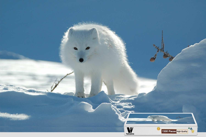 2019人気特価 PigBangbang -、34.4 X 22.6インチ、木製 - Arctic Snow Fox Arctic Wolf Snow - 1500ピースジグソーパズル B07FRXXDBT, うに カニ まぐろなら築地の王様:a1d54135 --- 4x4.lt