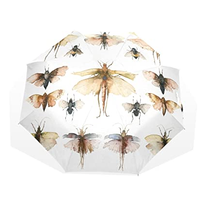 Amazon Com Wdysecret Pintura La Hormiga Plegable Paraguas