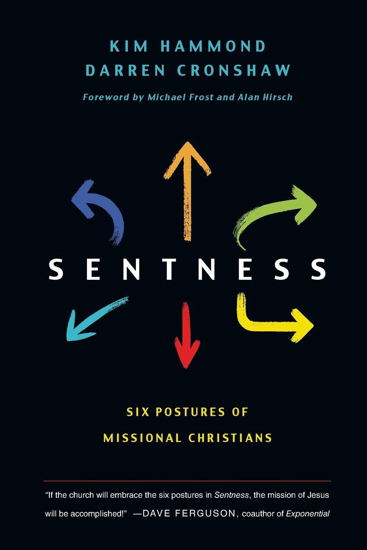 Read Online Sentness: Six Postures of Missional Christians pdf