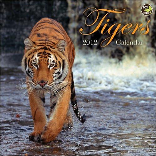 2012 Tigers Wall Calendar