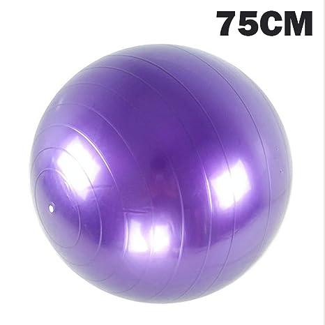 Amazon.com: Glass Perilla Sports Yoga Balls Bola Pilates ...