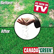 Canada Green Grass Seed - 12 Pounds