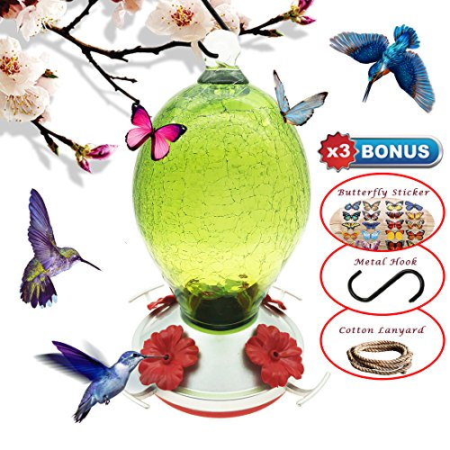 REZIPO Hummingbird Feeder with Perch - Hand Blown Glass - Green - 27 Fluid Ounces Hummingbird Nectar Capacity include Hanging Wires