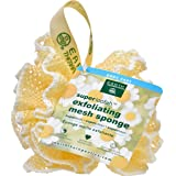 Amazon Com Exfoliating Loofah Pad 2pack 100 Natural