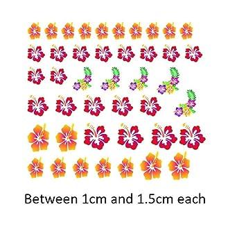 Amazoncom Kazcreations Hibiscus Flower Collection Hibiscus Flower