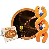 GIANTMicrobes - DNA (Deoxyribonucleic acid) Educational Plush