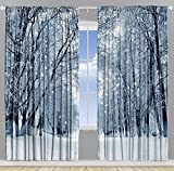 Farmhouse Woodsy Woodland Window Drapes for Bedroom Park Decor Snowy Forest Trees Polar Winter Park Jungle Icy Design Scenery View Living Kids Room Curtains 2 Panels Set, 108×84 Inch White Gray Black