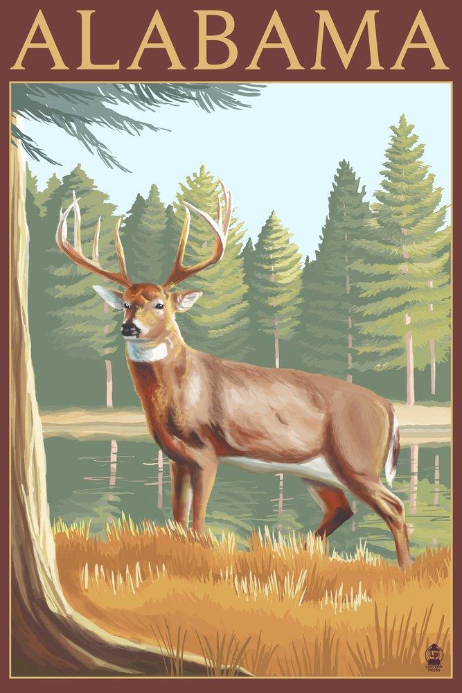 アラバマホワイトTailed Deer 36 x 54 Giclee Print LANT-36780-36x54 36 x 54 Giclee Print  B017E9X3J4
