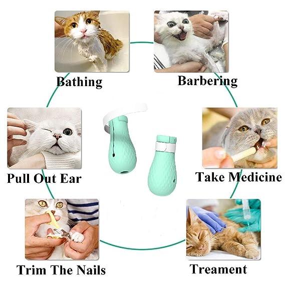 Amazon.com: Weonly - Botas antiarañazos para gatos, 4 ...