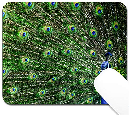 (MSD Mouse Pad with Design - Non-Slip Gaming Mouse Pad - Image ID: 14044662 Peacock with Beautiful Multicolored)