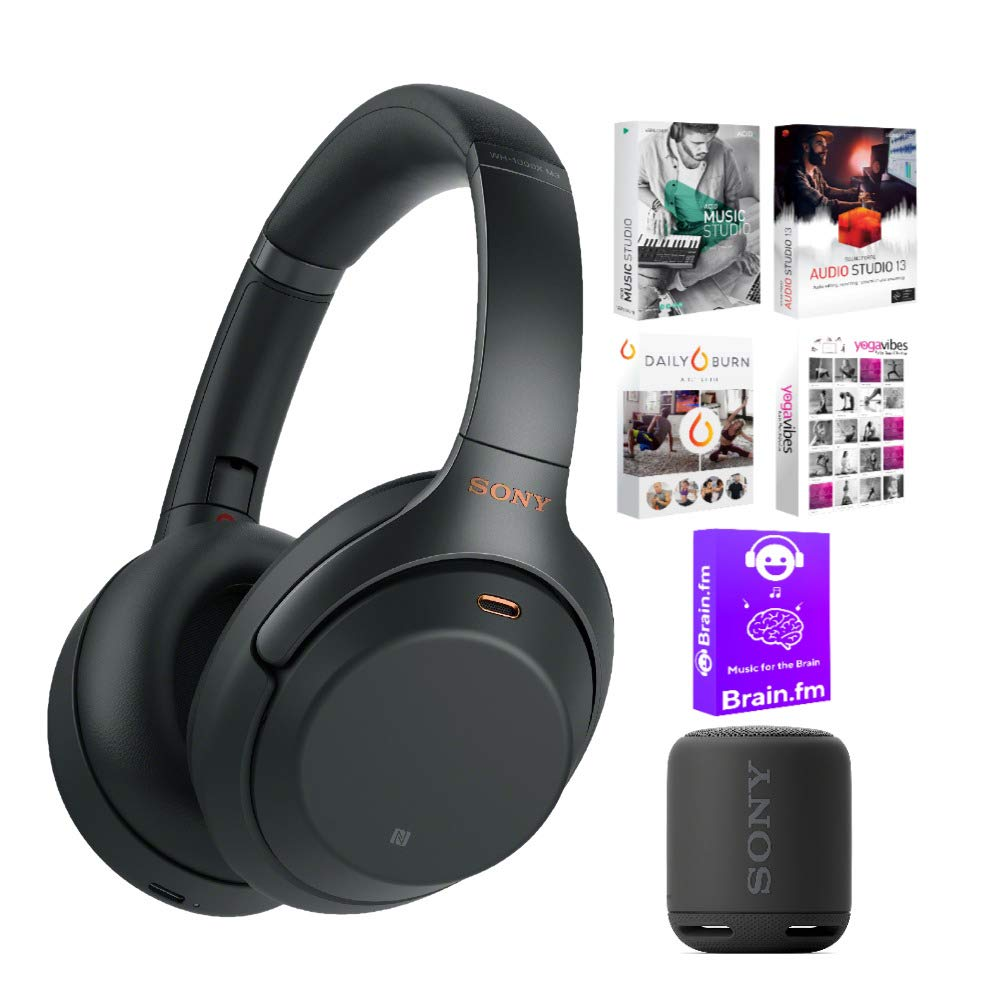 Sony WH1000XM3/B Wireless Noise-Canceling Headphones (Black) Bundle with SRSXB10 Portable Bluetooth Speaker and Software Suite (3 Items)