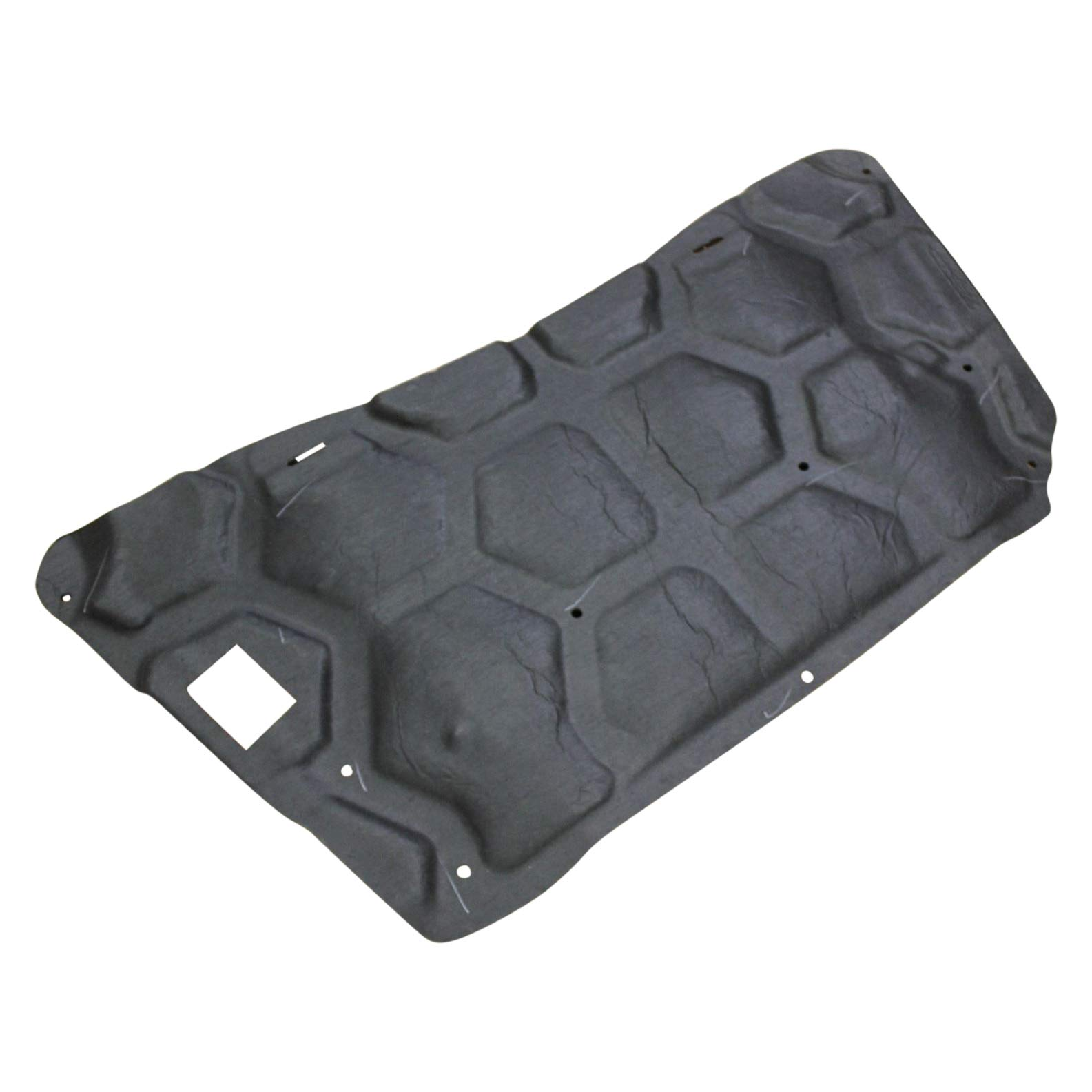 Ford Oem Hood Insulation Pad Dg1z16738a Image 2