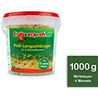 Erdbeerprofi - Dünger für Erdbeeren (500 g) - Langzeitdünger für Erdbeerpflanzen - Erdbeerendünger - Düngemittel für Erdbeeren