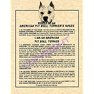 Rules In An American Pit Bull Terrier's House 3