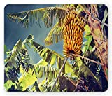 Fruits Mouse Pad, Bunch of Ripe Bananas on Tree Agricultural Plantation Madeira Island Africa, Standard Size Rectangle Non-Slip Rubber Mousepad, Fern Green Yellow