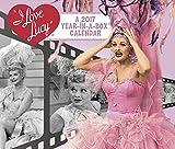I Love Lucy Year-In-A-Box Calendar (2017)