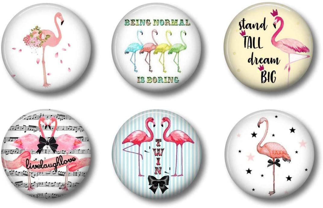 Cute Locker Magnets For Teens - Pink Flamingo Magnets - Fun School Supplies - Whiteboard Office or Fridge - Funny Magnet Gift Set (3)