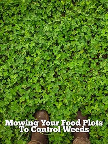 Mowing Your Food Plots To Control