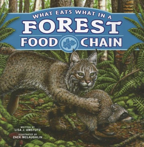 What Eats What in a Forest Food Chain (Food Chains)