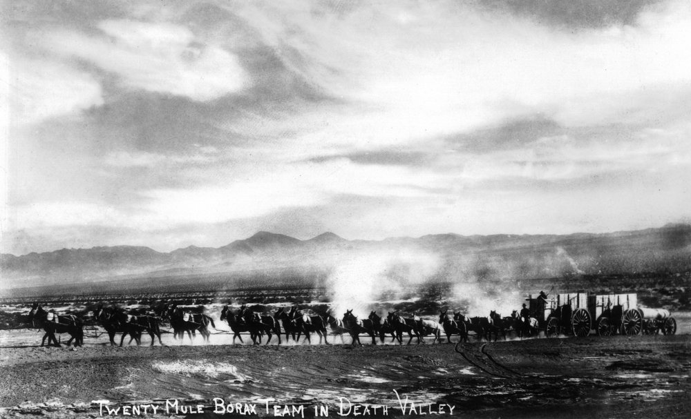 Death Valley, California - View of a Twenty Mule Borax Team - Vintage Photograph (12x18 Art Print, Wall Decor Travel Poster)