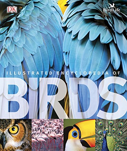 The Illustrated Encyclopedia of Birds. (Dk)