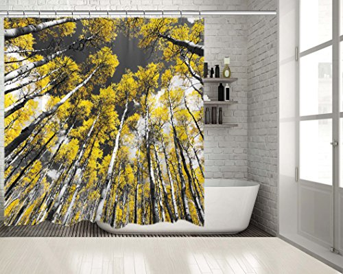 Positive Home Golden Leaves of Fall Aspen Tree Forest Landscape Black and White Scene in the Colorado Rocky Mountains Printed Long Shower Curtain 70
