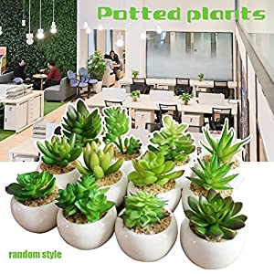 AllGreen Assorted Potted Succulents Plants Decorative Artificial Succulent Plants Potted Faux Cactus Aloe with Gray Pots Artificial Topiary Plant Potted 37