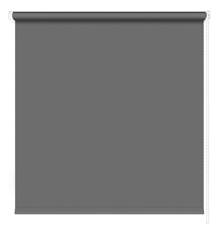 Kettenzugrollo Seitenzugrollo Seitenzugrollo Seitenzugrollo Fenster Rollo 13 Farben Breite 60 - 220 cm Länge 180 und 230 cm blickdicht halbtransparent lichtdurchlässig Sonnenschutz Blendschutz (Größe 220 x 180 cm Farbe Anthrazit) B07BJB13PN Seitenzug- & Springroll 8b6b9b