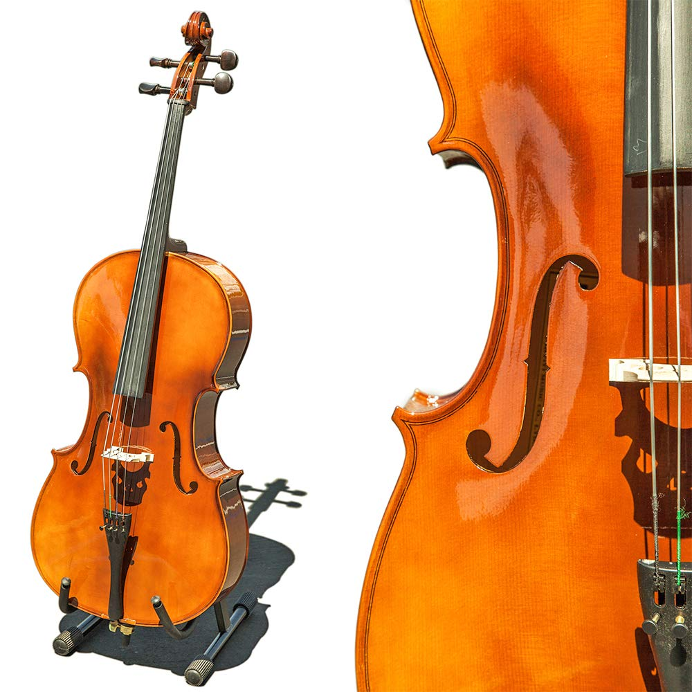 Paititi CE4009SE AVANT-GARDE Ebony Fitted Glossy Finish Solid Wood Cello with Soft Case, Brazilwood Bow, Rosin and Stopper (1/2)
