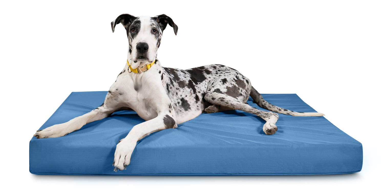 K9 Ballistics Tough Rectangle Orthopedic XL Extra Large Dog Bed - Washable, Durable and Waterproof XL Dog Beds - Made for Big Dogs, 38''x54'', Blue