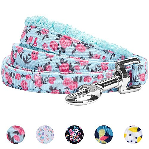 "Blueberry Pet 5 Patterns Durable Spring Made Well Cute Floral Print Dog Leash in Light Blue, 5 ft x 5/8"", Small, Leashes for Dogs"