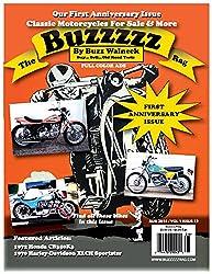 The Buzzzzz Rag: Volume 1 Issue 12