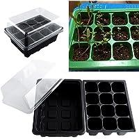 Caja de 12 agujeros para plantar semillas